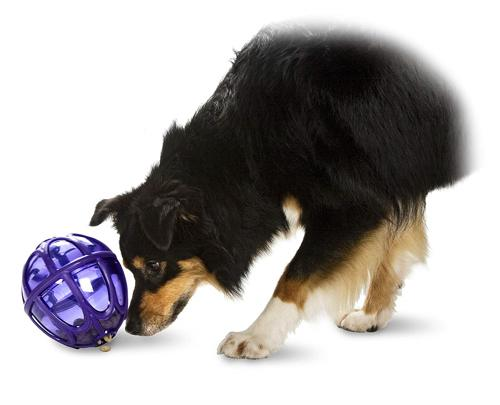The 10 Best Dog Puzzle Toys For The Bored Canine
