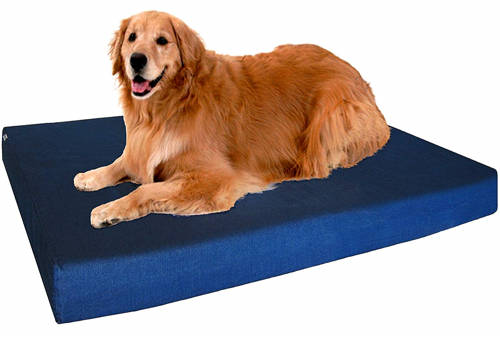 dogbed4less review