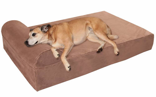 best dog beds for Labs in 2019